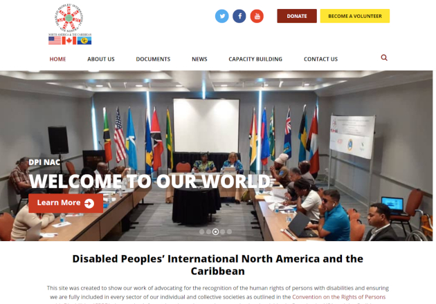 Disabled People's International North America and the Caribbean website by Anchor Monkey