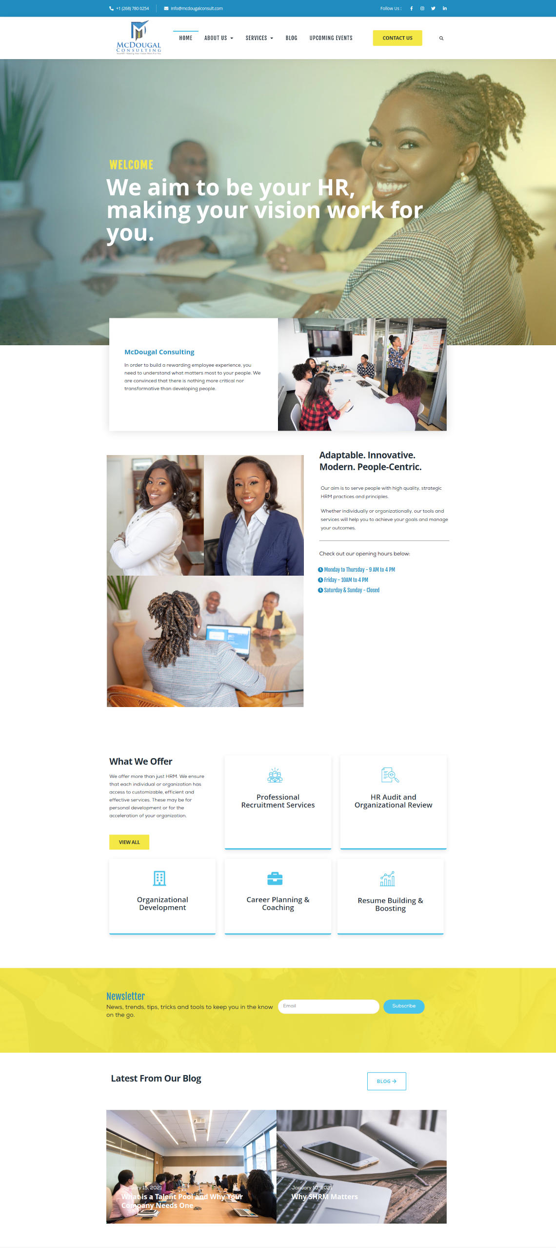 McDougal Consulting website by Anchor Monkey